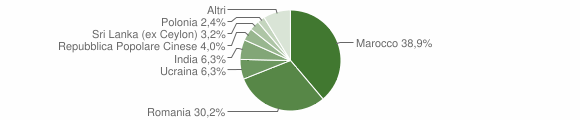 Grafico cittadinanza stranieri - Chiaravalle Centrale 2013