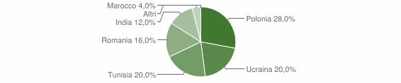 Grafico cittadinanza stranieri - Figline Vegliaturo 2011