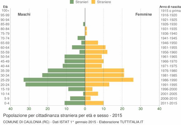 Grafico cittadini stranieri - Caulonia 2015