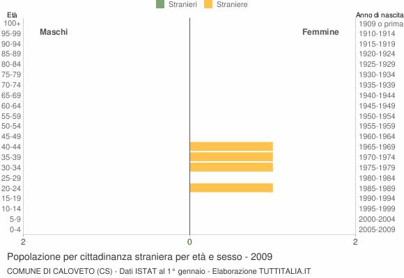 Grafico cittadini stranieri - Caloveto 2009