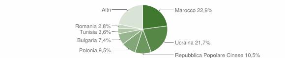 Grafico cittadinanza stranieri - Vibo Valentia 2007
