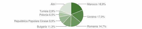 Grafico cittadinanza stranieri - Vibo Valentia 2009