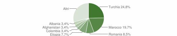 Grafico cittadinanza stranieri - Badolato 2009