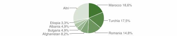 Grafico cittadinanza stranieri - Badolato 2015