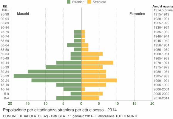 Grafico cittadini stranieri - Badolato 2014