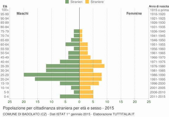 Grafico cittadini stranieri - Badolato 2015