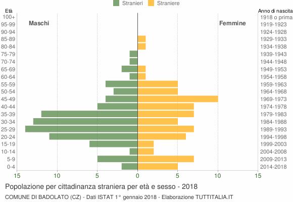 Grafico cittadini stranieri - Badolato 2018