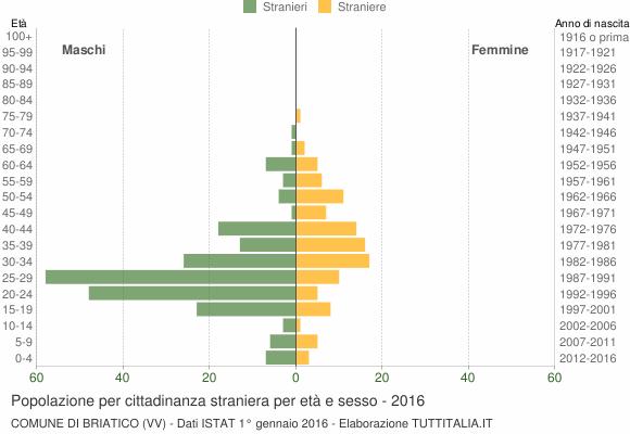 Grafico cittadini stranieri - Briatico 2016