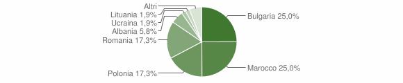 Grafico cittadinanza stranieri - Settingiano 2009