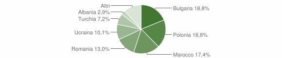 Grafico cittadinanza stranieri - Settingiano 2010