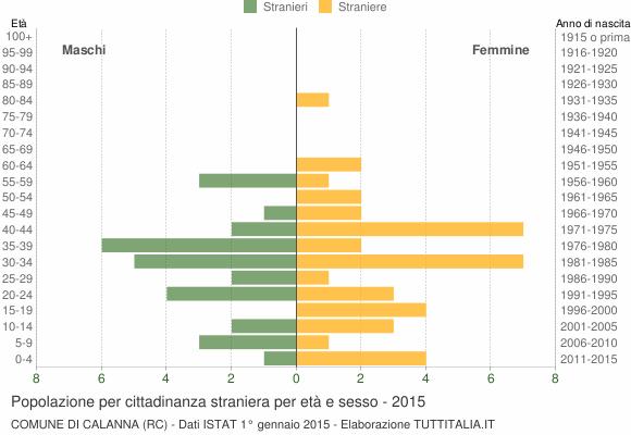 Grafico cittadini stranieri - Calanna 2015