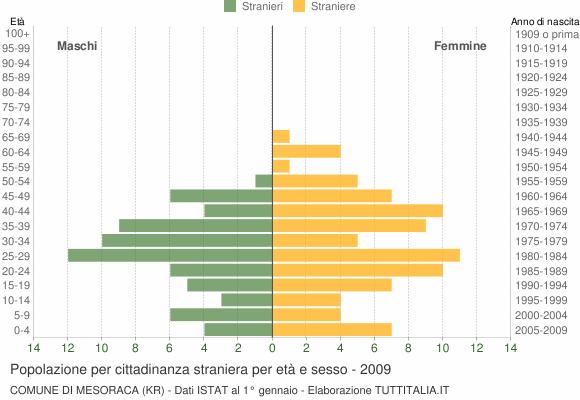 Grafico cittadini stranieri - Mesoraca 2009