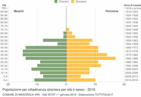 Grafico cittadini stranieri - Mesoraca 2019