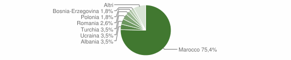 Grafico cittadinanza stranieri - Guardavalle 2006