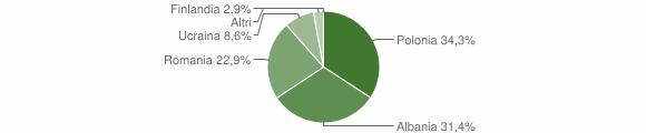 Grafico cittadinanza stranieri - Spadola 2010