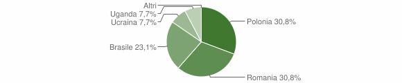 Grafico cittadinanza stranieri - San Pietro Apostolo 2010