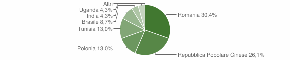Grafico cittadinanza stranieri - San Pietro Apostolo 2013