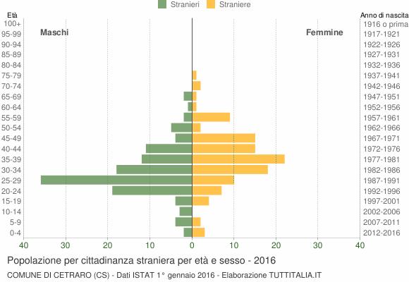 Grafico cittadini stranieri - Cetraro 2016