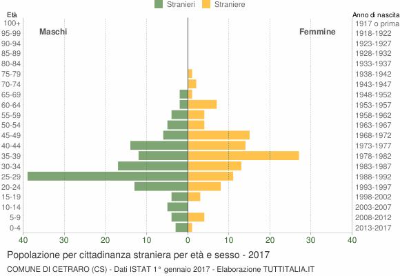 Grafico cittadini stranieri - Cetraro 2017