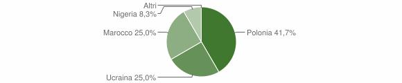 Grafico cittadinanza stranieri - Zaccanopoli 2007