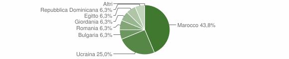 Grafico cittadinanza stranieri - Cessaniti 2004