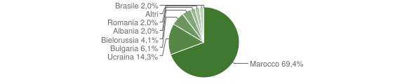 Grafico cittadinanza stranieri - Cessaniti 2008