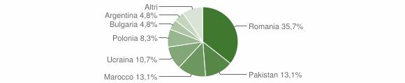 Grafico cittadinanza stranieri - Cessaniti 2013