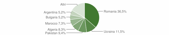 Grafico cittadinanza stranieri - Cessaniti 2019