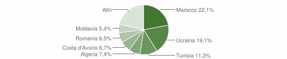 Grafico cittadinanza stranieri - Rosarno 2007