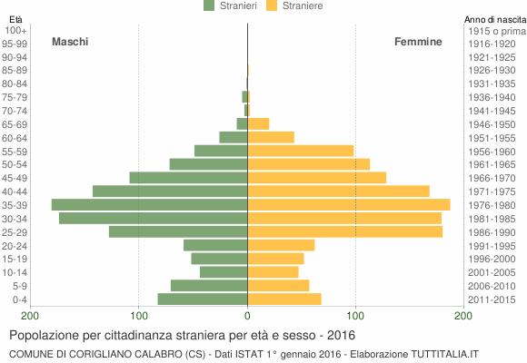 Grafico cittadini stranieri - Corigliano Calabro 2016
