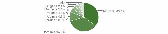 Grafico cittadinanza stranieri - Maida 2008