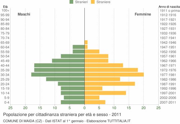 Grafico cittadini stranieri - Maida 2011
