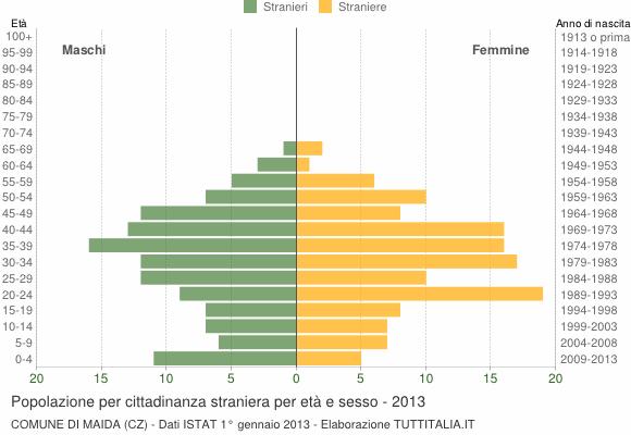 Grafico cittadini stranieri - Maida 2013