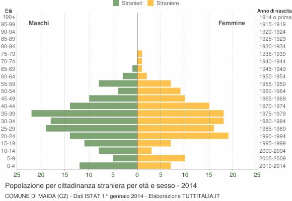 Grafico cittadini stranieri - Maida 2014