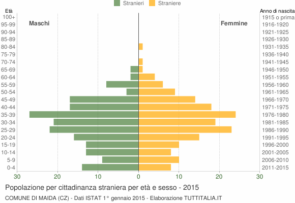 Grafico cittadini stranieri - Maida 2015