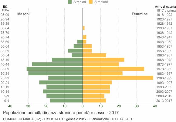 Grafico cittadini stranieri - Maida 2017