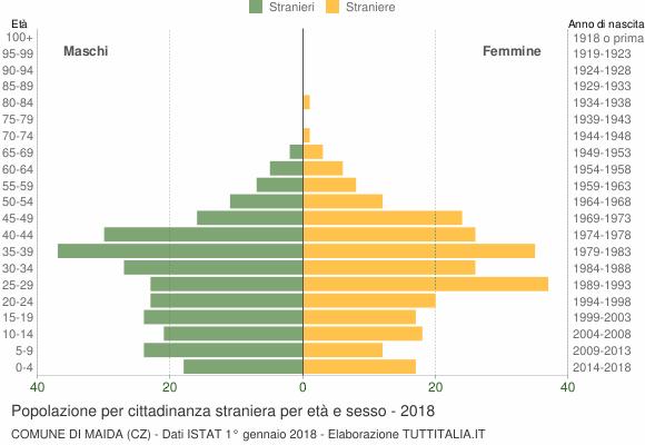 Grafico cittadini stranieri - Maida 2018