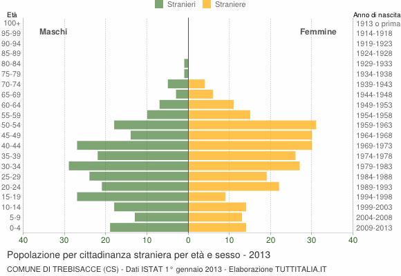 Grafico cittadini stranieri - Trebisacce 2013