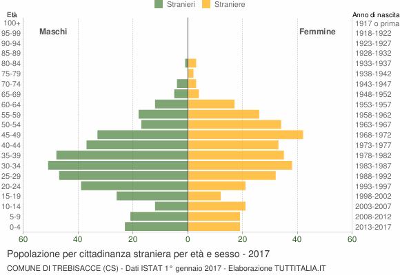 Grafico cittadini stranieri - Trebisacce 2017