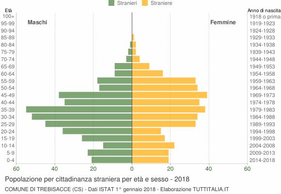Grafico cittadini stranieri - Trebisacce 2018