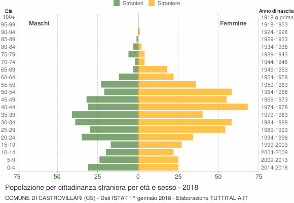 Grafico cittadini stranieri - Castrovillari 2018