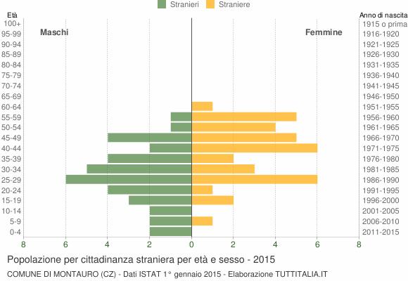 Grafico cittadini stranieri - Montauro 2015