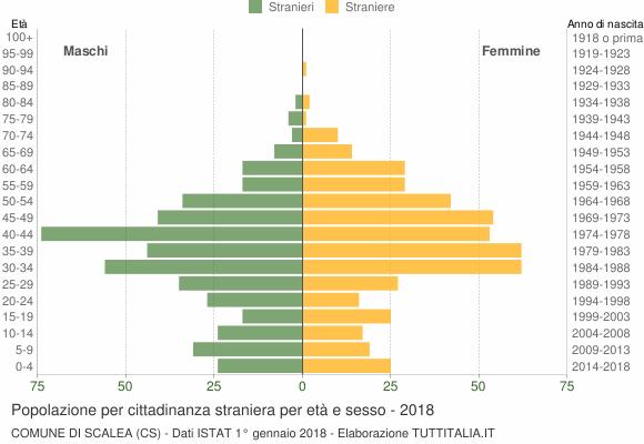 Grafico cittadini stranieri - Scalea 2018