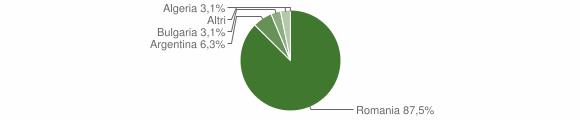 Grafico cittadinanza stranieri - Zungri 2008