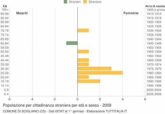 Grafico cittadini stranieri - Scigliano 2009