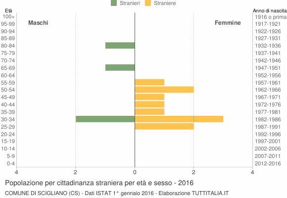 Grafico cittadini stranieri - Scigliano 2016