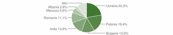 Grafico cittadinanza stranieri - Candidoni 2012