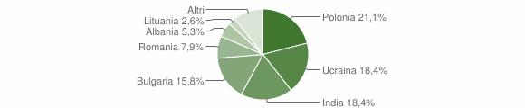Grafico cittadinanza stranieri - Candidoni 2013