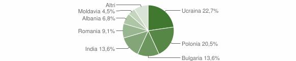 Grafico cittadinanza stranieri - Candidoni 2014
