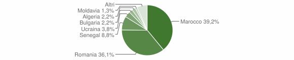 Grafico cittadinanza stranieri - Mileto 2010